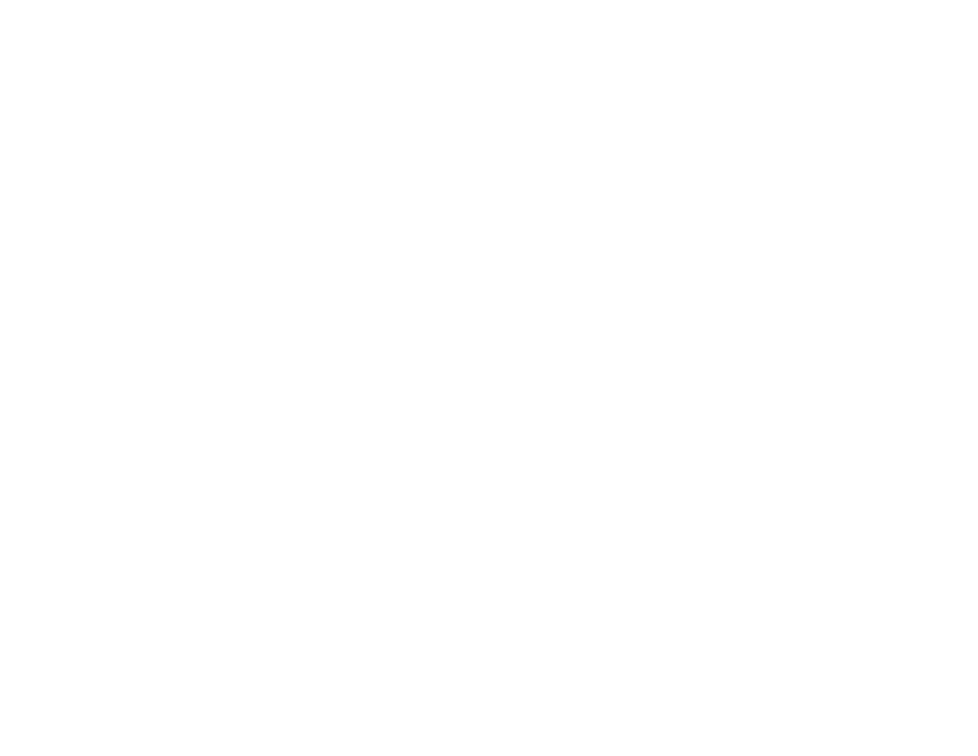 Logo-mini-NBIC-valley-blanc