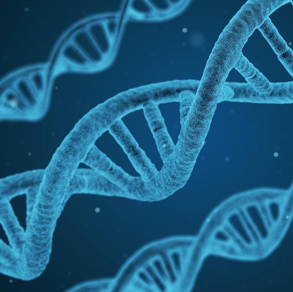 DNARepairman_microfluidics_microscopy_cells-NBIC_Valley-Elvesys