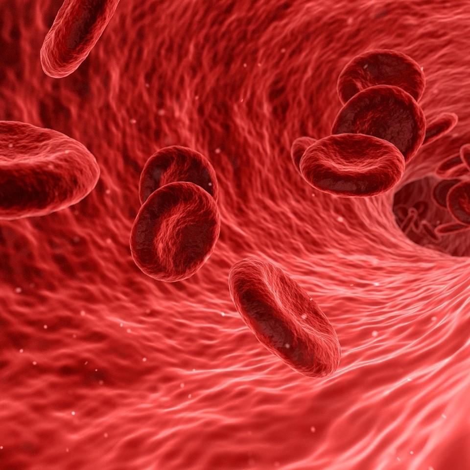 PANBioRA_microfluidics_personalized_medicine-NBIC_Valley-Elvesys
